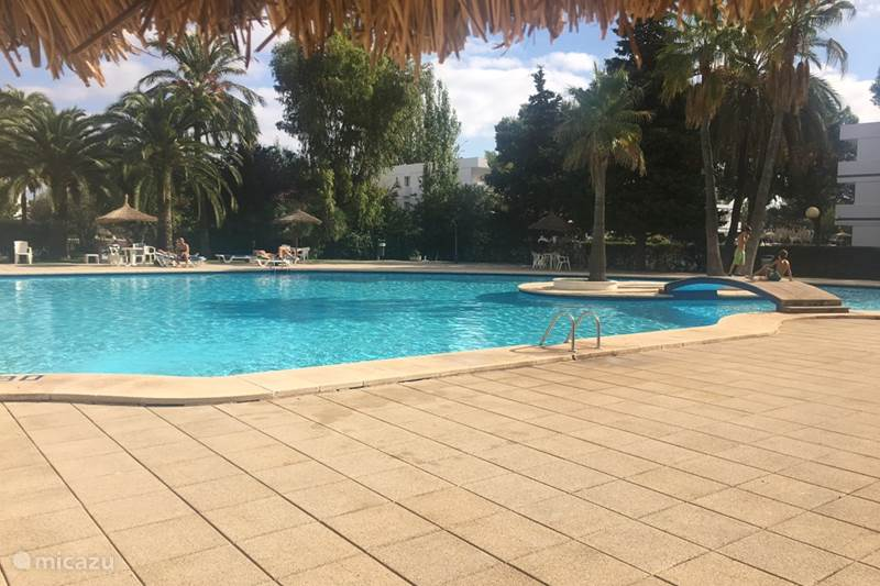Vakantiehuis Spanje, Mallorca, Alcúdia Appartement San Pedro