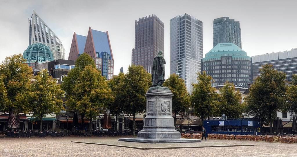 Den Haag en Rotterdam