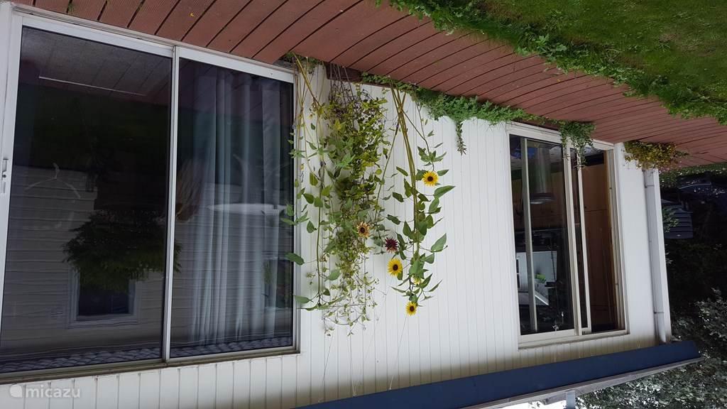 Vakantiehuis Nederland, Zuid-Holland, `s-Gravenzande Chalet Beach house Sunflower, vlakbij zee