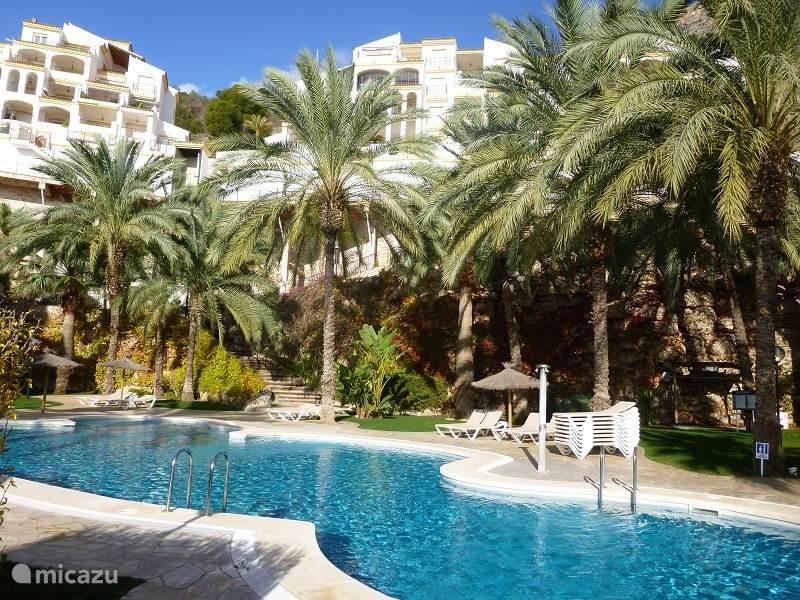 Vakantiehuis Spanje, Costa Blanca, Altea appartement Appartement Nederlands