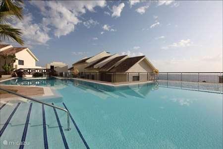 Vakantiehuis Spanje, Costa del Sol, Marbella - appartement Los Monteros Hill Club 19