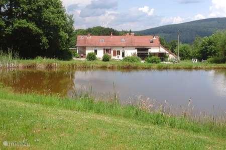 Vakantiehuis Frankrijk, Nièvre, Fâchin boerderij Les Bougnons