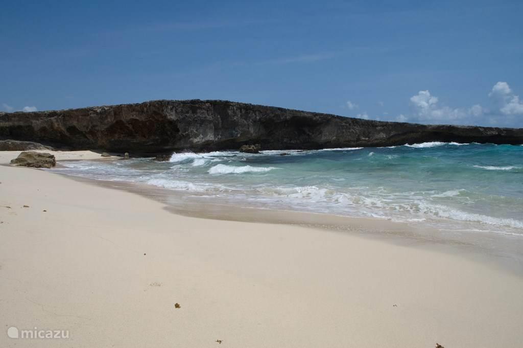 De Noord kust van Aruba