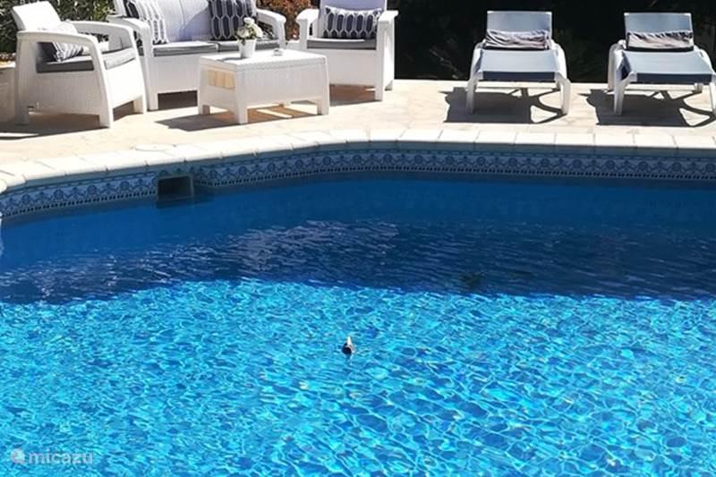 Vakantiehuis Spanje, Costa Blanca, Albir Appartement Casa Rey