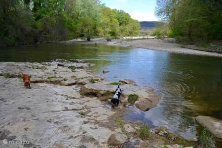 River Cèze