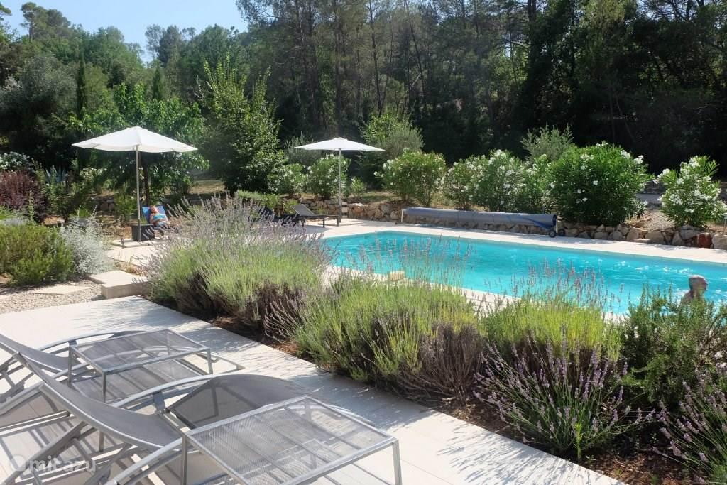 Vakantiehuis Frankrijk, Provence, Lorgues Villa Villa Loriot