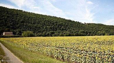 De Lot et Garonne, het Toscane van Frankrijk