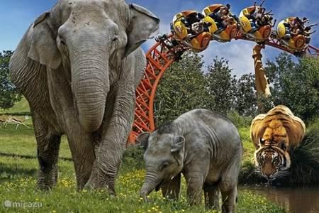Vergnügungspark & Zoo Le Pal
