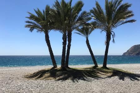 Playa Salobreña