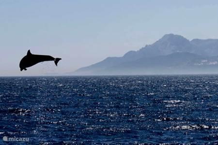 Zee, zon en prachtige natuur
