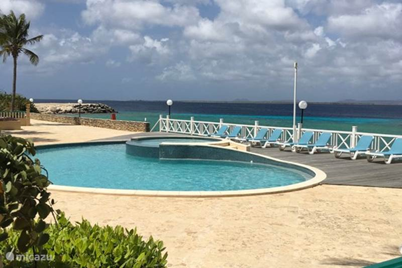 Vacation rental Bonaire, Bonaire, Kralendijk Apartment BonMar