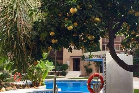 Vakantiehuis Spanje, Costa del Sol, Nerja - appartement Appartement Palm Beach