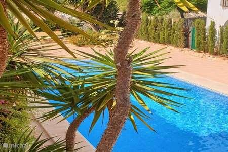 Vakantiehuis Spanje, Costa Blanca, Javea appartement Javea Appartment Arenal Strand