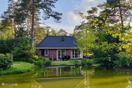 Vacation rental Netherlands – villa The Veluwe Pond House - LAST MINUTE
