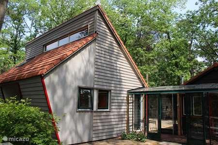 Vakantiehuis Nederland, Overijssel, Holten - vakantiehuis Borkeld Bosstudio