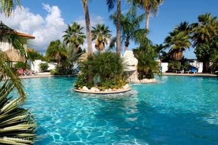 Vakantiehuis Curaçao, Curacao-Midden, Koraal Partier studio Droomstudio Serucoral 32