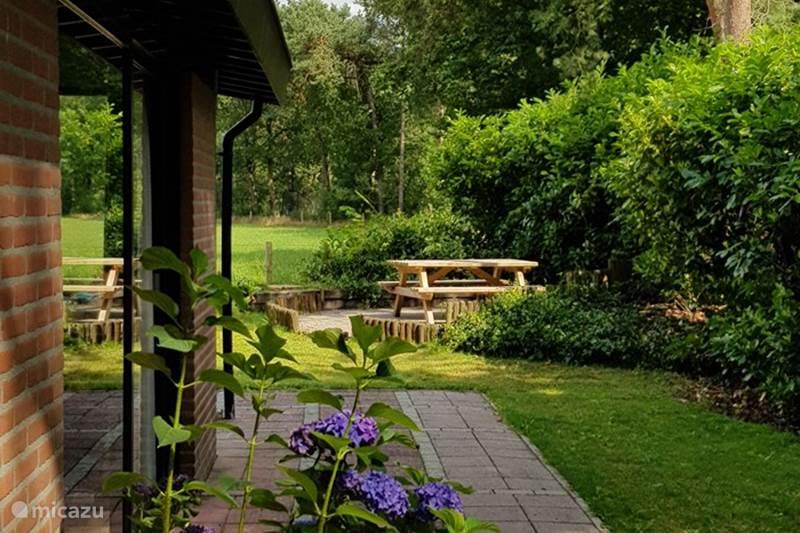Vakantiehuis Nederland, Overijssel, Giethmen Bungalow Het Hazenoortje