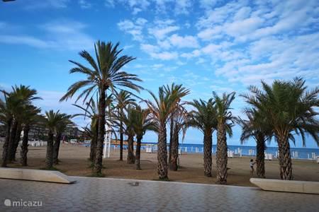 El Arenal, boulevard en strand