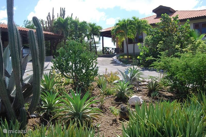 Vacation rental Curaçao, Banda Abou (West), Sint Willibrordus Villa Villa Santa Brigitta