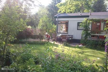 Vakantiehuis Nederland, Gelderland, Harderwijk - chalet Lida's zomerhuisje