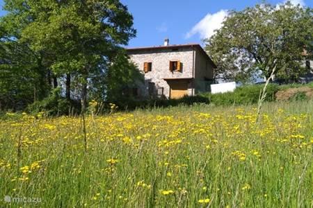 Prachtig appartement in een typisch Toscaans landhuis met tuin.
