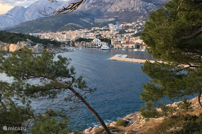 Vacation rental Croatia, Dalmatia, Makarska Apartment Villa Makarska