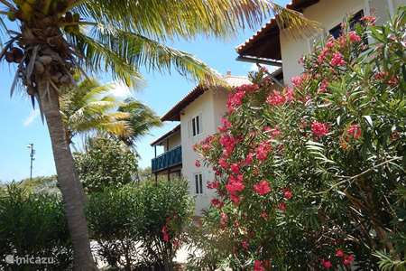 Vacation rental Bonaire, Bonaire, Belnem apartment Windsock Beach Resort Apartment #7