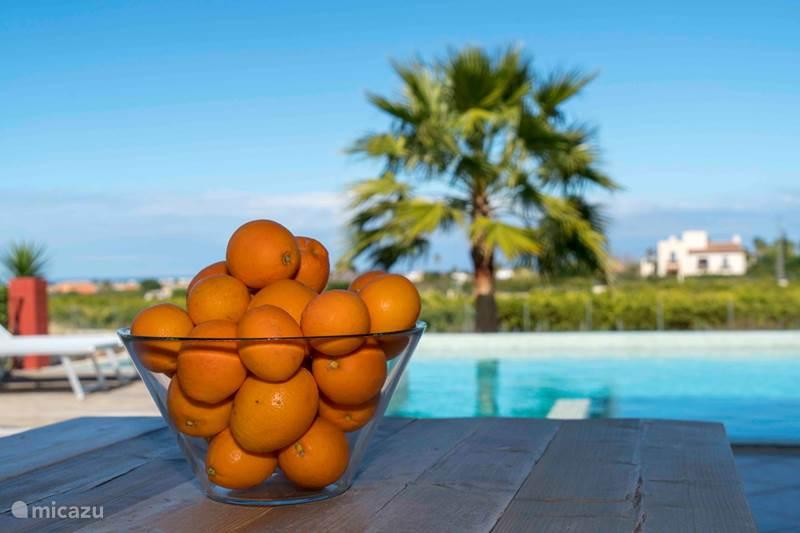 Vakantiehuis Spanje, Costa Blanca, Pedreguer Vakantiehuis Casa la Naranja
