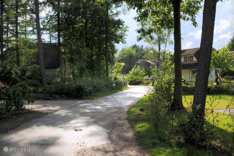Vakantiehuis Nederland, Overijssel, Heeten Gîte / Cottage Wildeman
