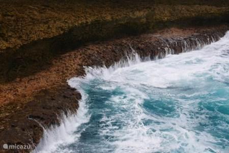 Shete Boka en haar 7 monden van de zee