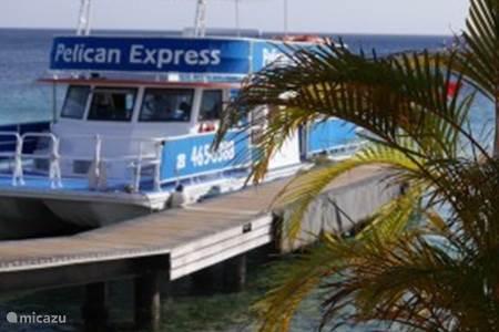 Maak een Sunset Tour met de gezellige crew van Pelican Express
