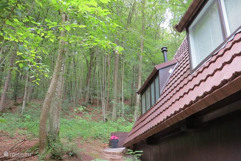 Vacation rental Belgium, Ardennes, Durbuy Holiday house The Oase Durbuy with indoorpool