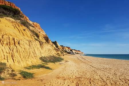 Falesia strand, een van de mooiste stranden van Europa en vlakbij