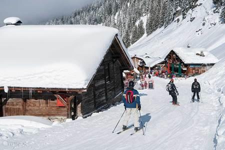 Actief in de bergen