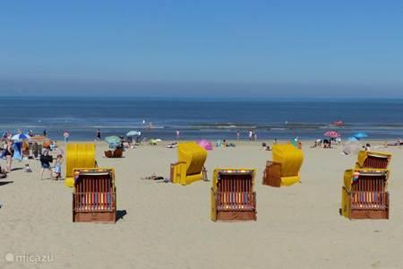 Relaxen op het strand !