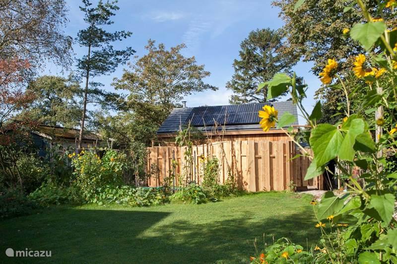 Vakantiehuis Nederland, Noord-Holland, Schoorl Vakantiehuis Ecolodge de Parel Schoorl