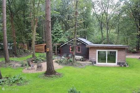 Vakantiehuis Nederland, Overijssel, Ommen bungalow Boshuis in Overijsselse Vechtdal