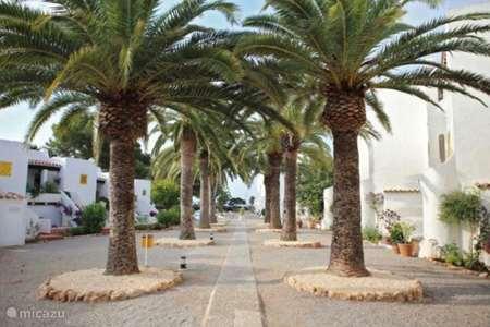 Vakantiehuis Spanje, Ibiza, Santa Eulalia appartement Apartamentos Niu