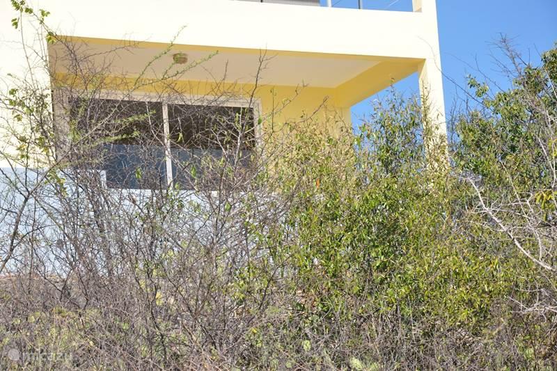 Vacation rental Curaçao, Banda Abou (West), Cas Abou Studio Cas Solo Seru