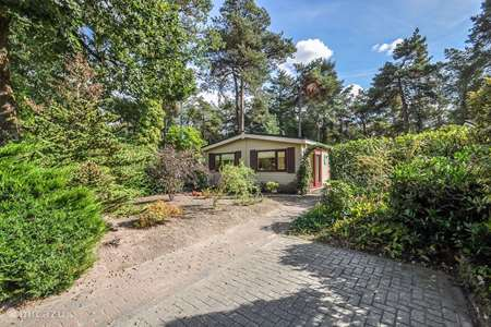 Vacation rental Netherlands, Drenthe, Diever chalet Chalet de Bosuil