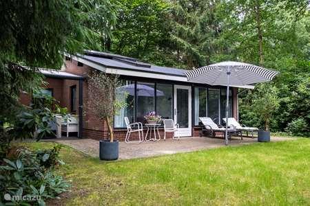 Vakantiehuis Nederland, Overijssel, Ommen - vakantiehuis Scholekster