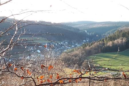 Uitzicht op Silbach