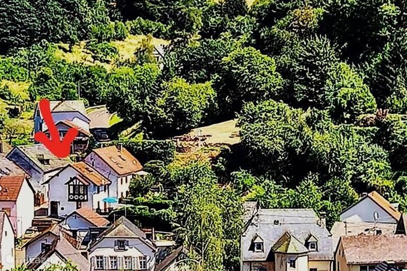 Ferienwohnung Deutschland, Eifel, Eisenschmitt Ferienhaus Ferienhaus Eifel