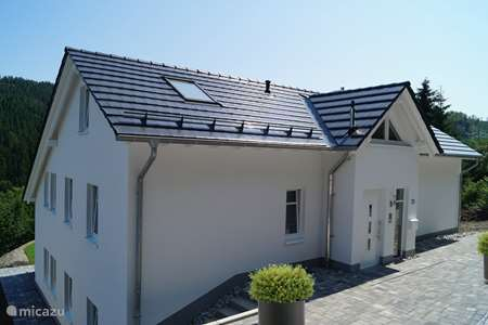 Vakantiehuis Duitsland, Sauerland, Willingen appartement Appartement Köhlerhagen