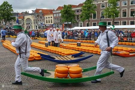 De beroemde kaasmarkt in Alkmaar