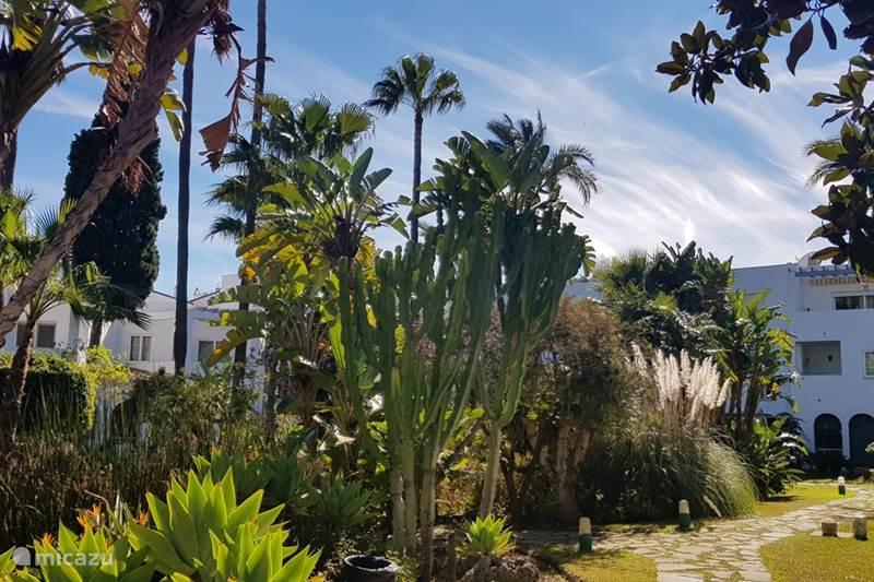 Vacation rental Spain, Costa del Sol, Mijas Golf Apartment Hoyo 16