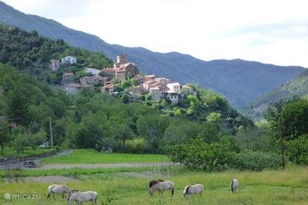Vakantiehuis Frankrijk, Pyrénées-Orientales, Baillestavy vakantiehuis Natuurhuis in Baillestavy, PO 66