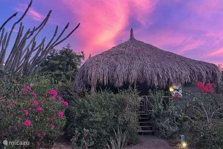 Vacation rental Curaçao, Curacao-Middle, Sint Michiel cabin / lodge Ara