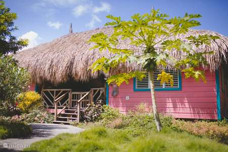 Vacation rental Curaçao, Curacao-Middle, Sint Michiel cabin / lodge Flamingo