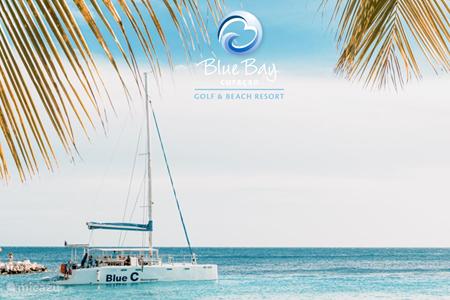 Blue Bay Watersports